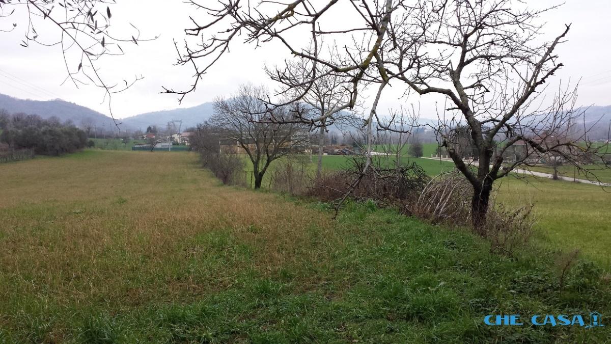 Terreno vendita MONTEFIORE CONCA (RN) - 1 LOCALE - 11500 MQ - foto 3