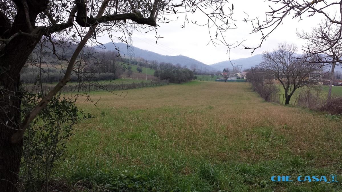 Terreno vendita MONTEFIORE CONCA (RN) - 1 LOCALE - 11500 MQ - foto 4