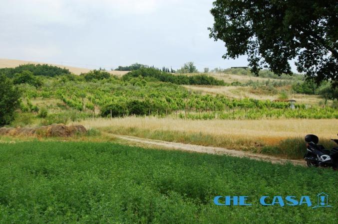 Terreno vendita SALUDECIO (RN) - 7400 MQ - foto 2