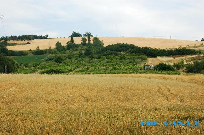 Terreno vendita SALUDECIO (RN) - 7400 MQ - foto 3