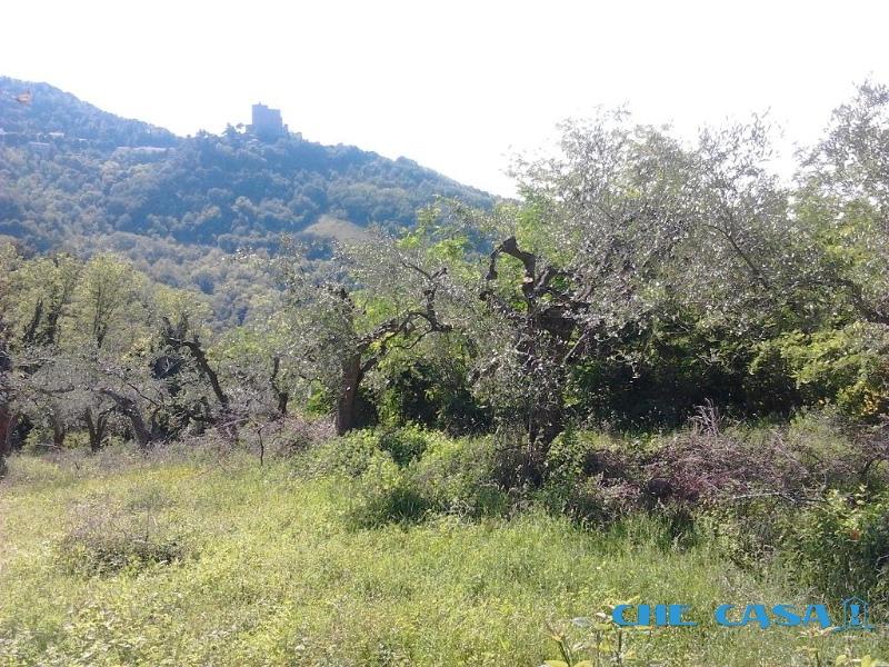 Terreno vendita MONTEFIORE CONCA (RN) - 2600 MQ - foto 2